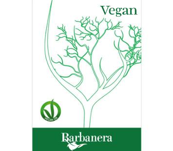 logo-vegan-small-mod3