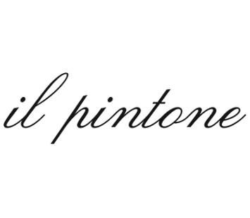 logo-pintoni-small